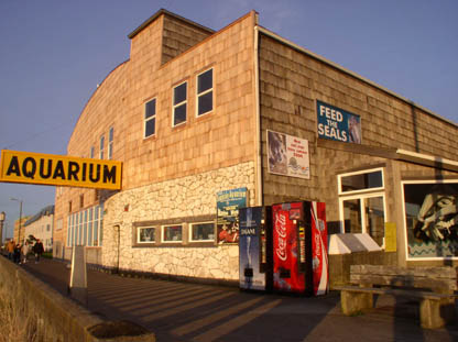 Seaside Aquarium 2005