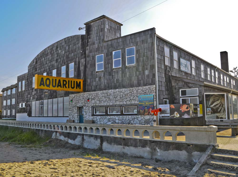 Seaside Aquarium 2012