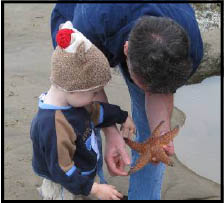 Child looking at starfish