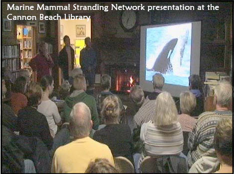 Marine Mammal Stranding Network presentation at the